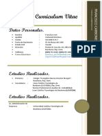 Curriculum Vitae (CARBONELL)