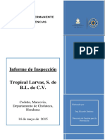 Informe Expediente Tropical Larvas