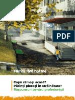 Familii-fara-hotare-Raspunsuri-pentru-profesionisti.pdf