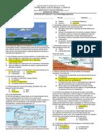 EVALUACION DE NATURALES 6° Los ciclos biogeoquimicos