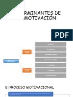 determinantes de la motivacion