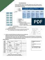 PC2 HERRAMIENTAS.pdf