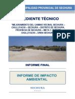 Informe Evaluacion Ambiental-chulliyachi