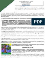 GUIA 1 NUTRICION.docx