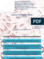 Diarrea Viral Bovina Presentación