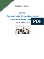 curso_consultoria_organizacional__07001.pdf