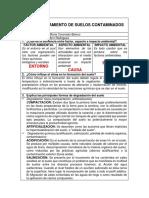 IP054 TRATAMIENTO DE SUELOS CONTAMINADOS.docx