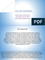 LEYES DE MENDEL.pptx