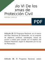 Capítulo VI de Los Programas de Protección Civil