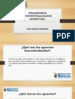 diaspositivas organizaciones desentralizadas.pptx