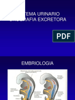 Urografia EE (5).ppt
