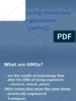 08 Genetically Modified Organisms-1.pptx