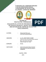 INFORME DE PRACTICA DEL CRECIMIENTO BIOMETRICO DE LA GAMITANA