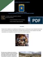 DIAPOSITIVAS-SUPERVISION-LOGÍSTICA-MINERA.pptx