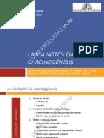 Via Notch Carcinogenesis