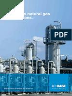 GAS - by BASF_1.pdf