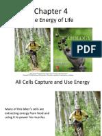 chapt04 ENERGY OF LIFE.pdf