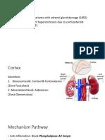 kortikosteroid .pptx
