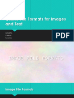 Online File Formats for Images and Text.ppt