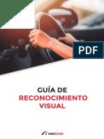 FS Descargable Guia Reconocimiento Visual