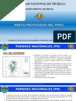 ÁREAS PROTEGIDAS DEL PERÚ.pptx