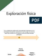 Exploración Física De Sistema Pulmonar