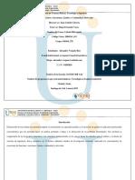Desarrollo Calculo diferen.pdf