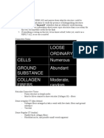 38511847 Histology Key