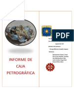 Informe Caja Petrografica