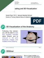 3D Slicer.pdf