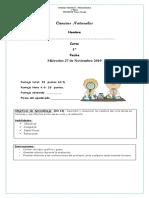 Evaluación de Ciencias Naturales Unidad 4 Noviembre