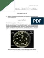 Sistemas de Siembra Para Hongos y Bacter