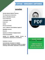 Gerardo Curriculum 2019