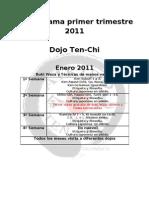 Cronograma Primer Trimestre 2011