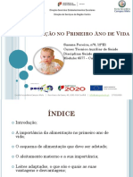 A Alimentação No Primeiro Ano de Vida Susana Pereira