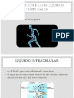 fisio.pptx