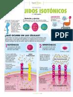 Como Funcionan Los Líquidos Isotonicos en Nuestro Organismo