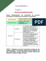 Iota 87 Linguistica i. Práctica de Morfología i (2017)