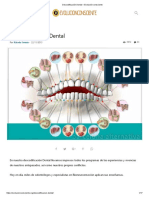 Descodificación Dental – Evolución Consciente