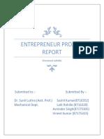entrepreneur project report
