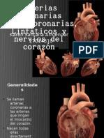 Arterias coronarias KarenSa