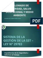 CLASE 2 Diplomado SSOMA Perú