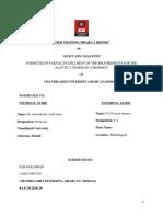 PARAS Final Project Report