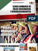 DH Pueblos Originarios y Afrodescendientes