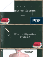 Digestive Systme