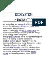 ECOSYSTEM.docx