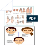 Genetics  Biology 11