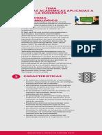 Infograma Temas Investigacion - Primitivo Ramirez Soto