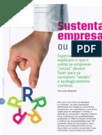 Sustentabilidade Empresarial custo extra ou impulso nos negócios ?