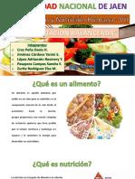Diseño Elementos Maquinas .pdf